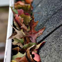 Clogged gutters filled with fall leaves  in Lanigan